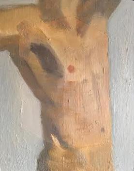 torso 4